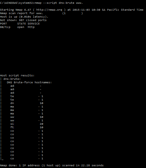 DNS brute nmap script